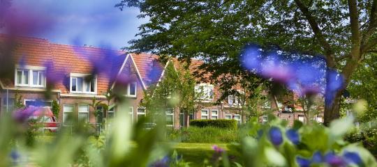 484_straatbeeld Borghesiusplantsoen.jpg
