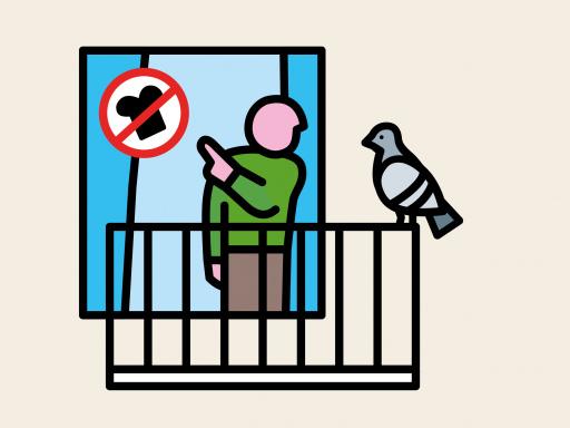 Woonpunt picto duiven voeren pastel.jpg