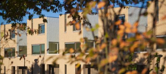 496_straatbeeld De Haese Geleen.jpg