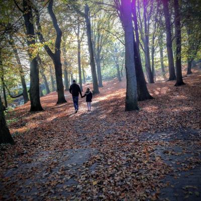 autumn-1204603_1920-4517eccf.jpg